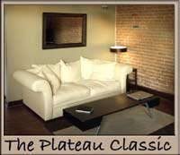 Plateau vacation rental condo